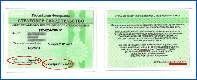 СНИЛС - фото документа